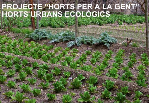 horts_urbans